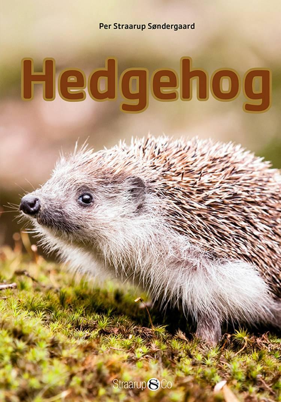Hedgehog af Per Straarup Søndergaard