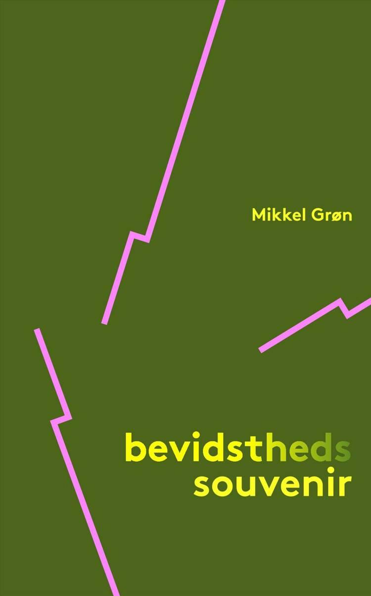 Bevidstheds souvenir af Mikkel Grøn