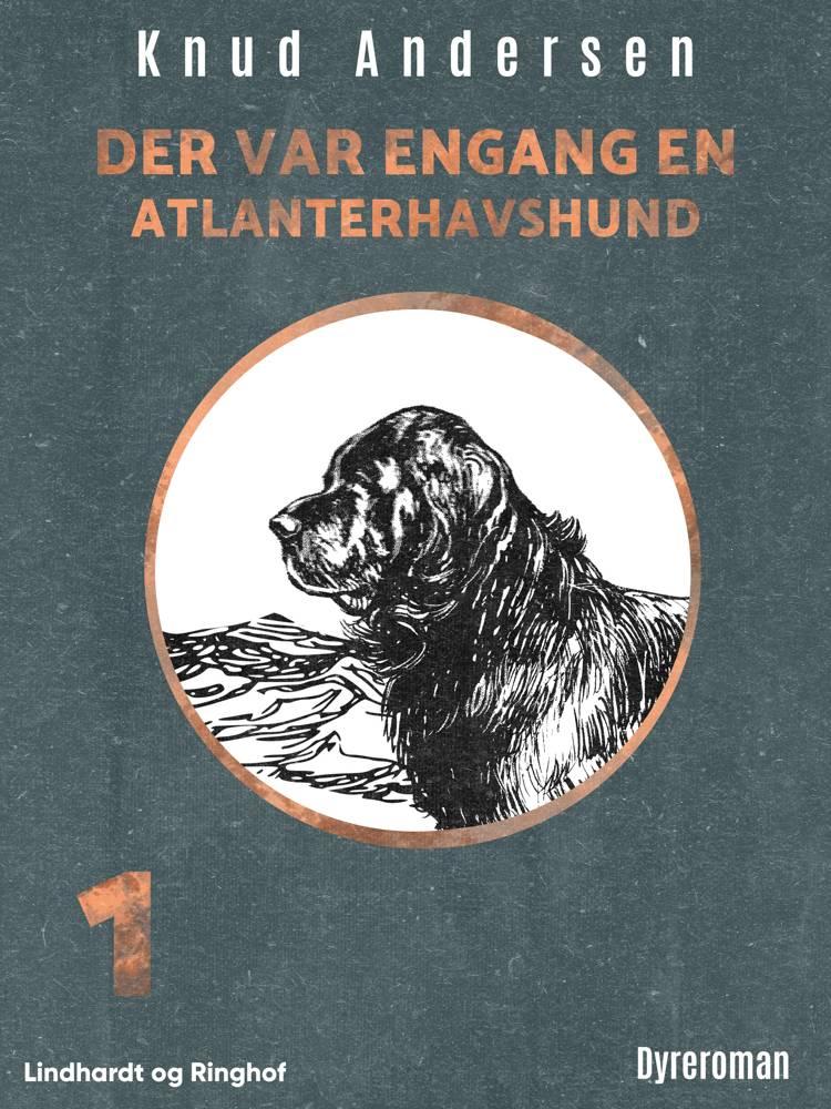 Der var engang en atlanterhavshund af Knud Andersen