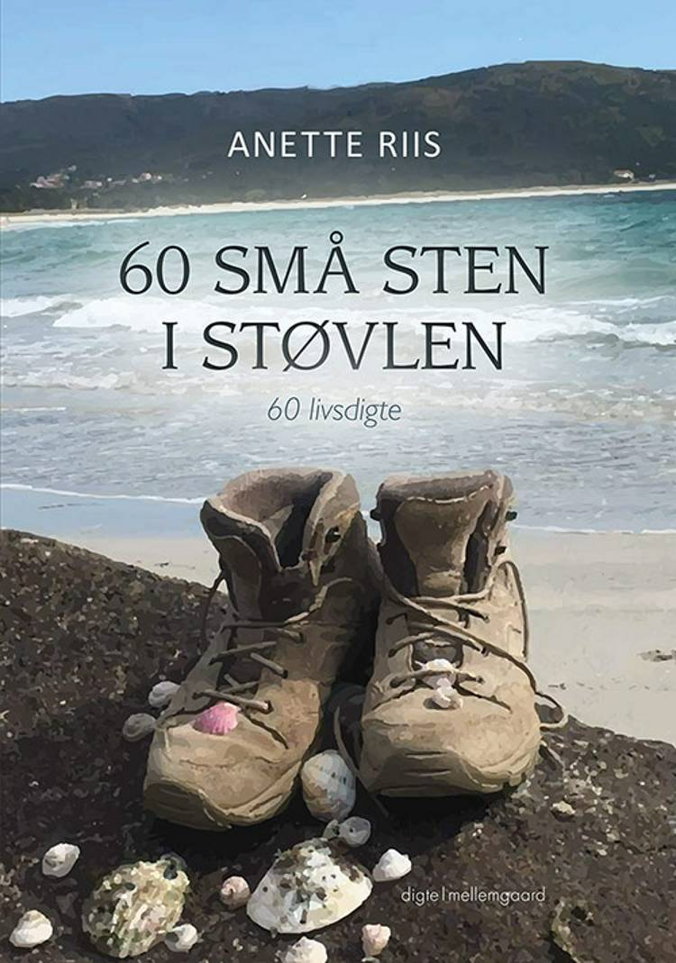 60 små sten i støvlen af Anette Riis