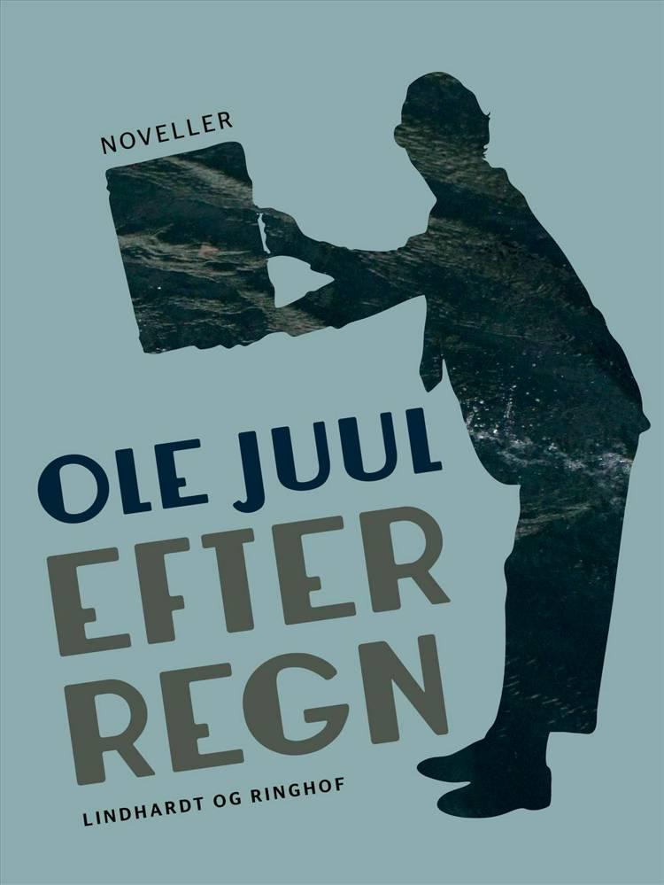 Efter regn af Ole Juul