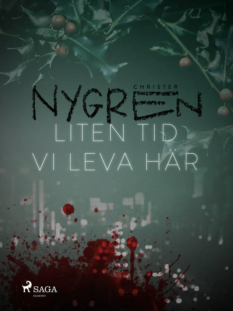 Liten tid vi leva här af Christer Nygren