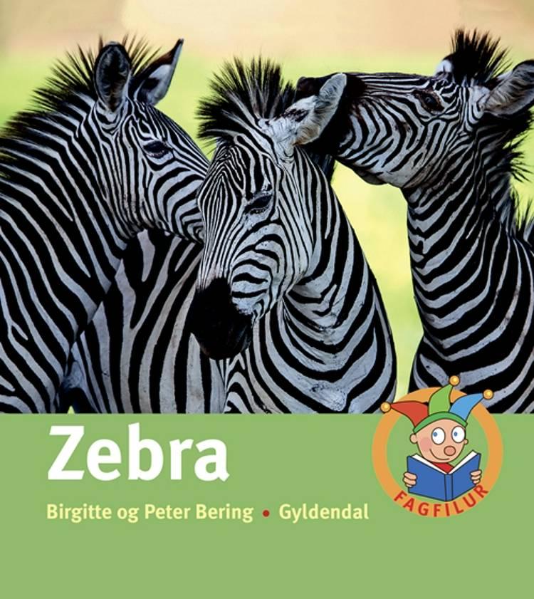 Zebra af Birgitte Bering og Peter Bering