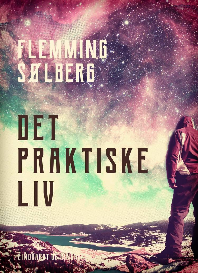 Det praktiske liv af Flemming Sølberg