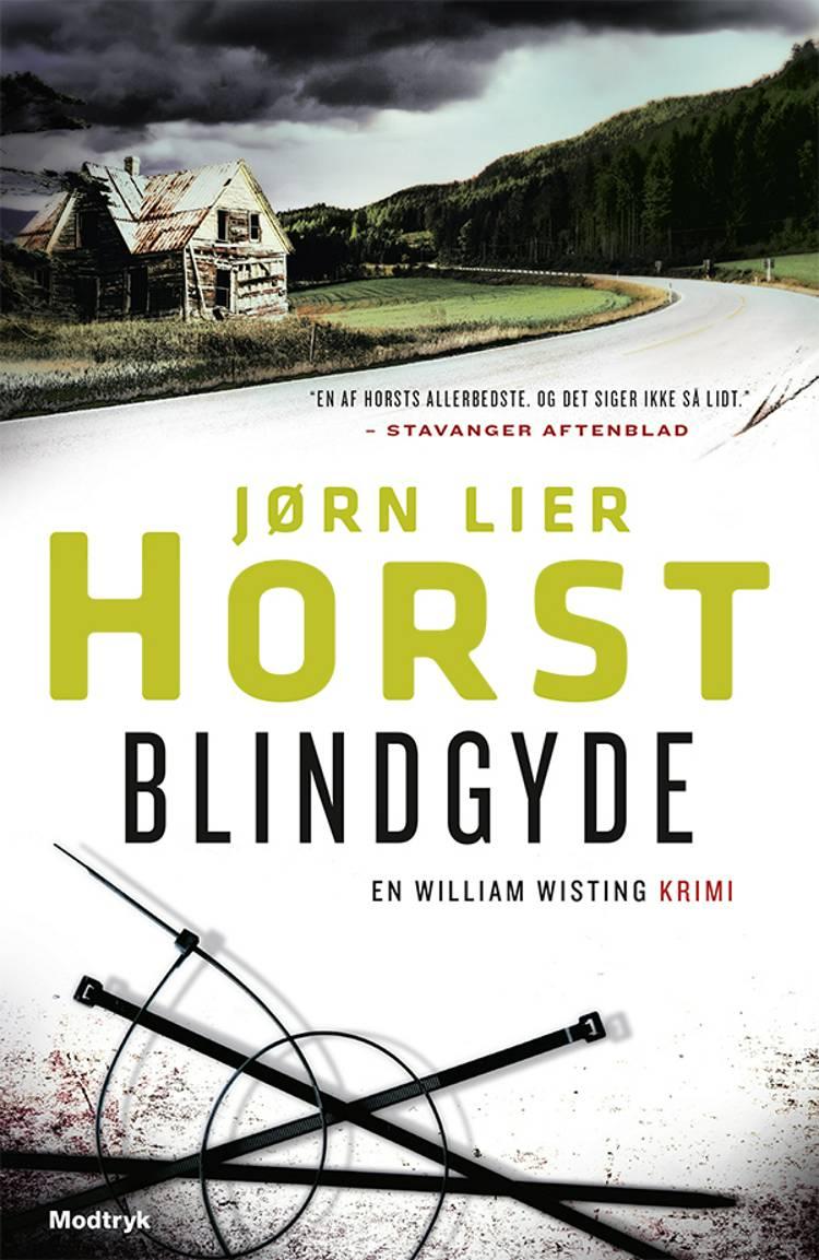 Blindgyde af Jørn Lier Horst
