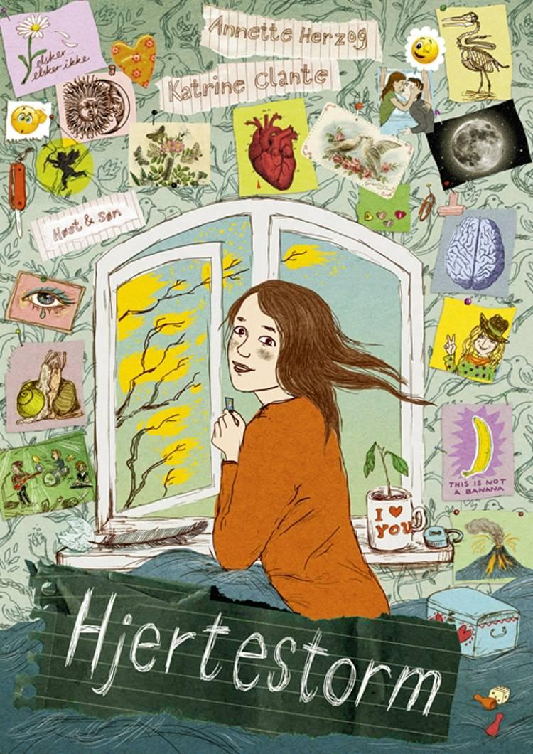 Hjertestorm af Annette Herzog, Rasmus Bregnhøi og Katrine Clante