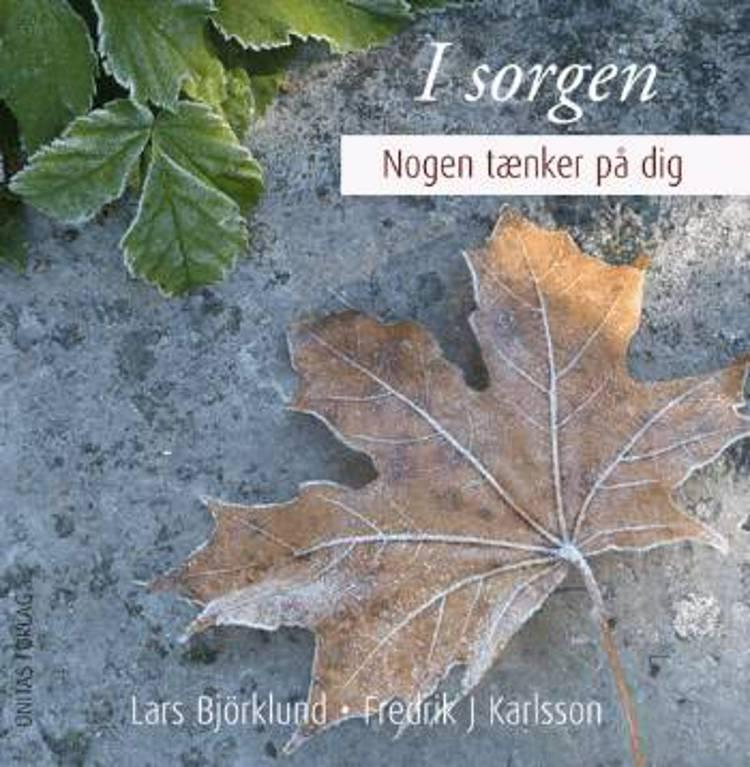 I sorgen af Lars Björklund