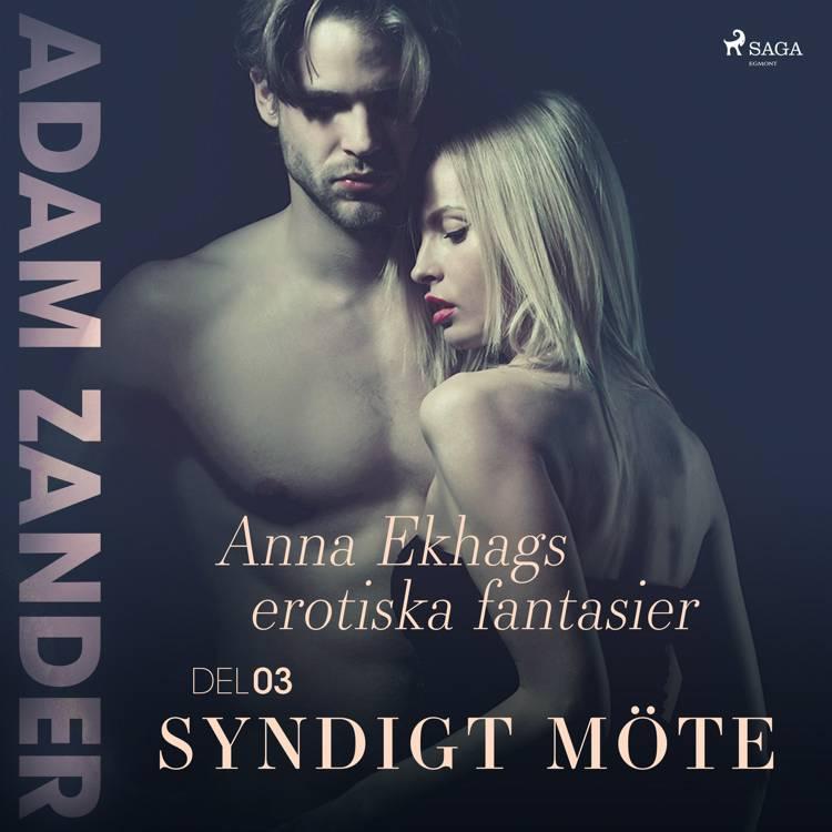 Syndigt möte – Anna Ekhags erotiska fantasier del 3 af Adam Zander