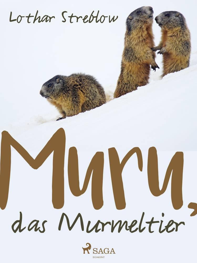 Murru, das Murmeltier af Lothar Streblow