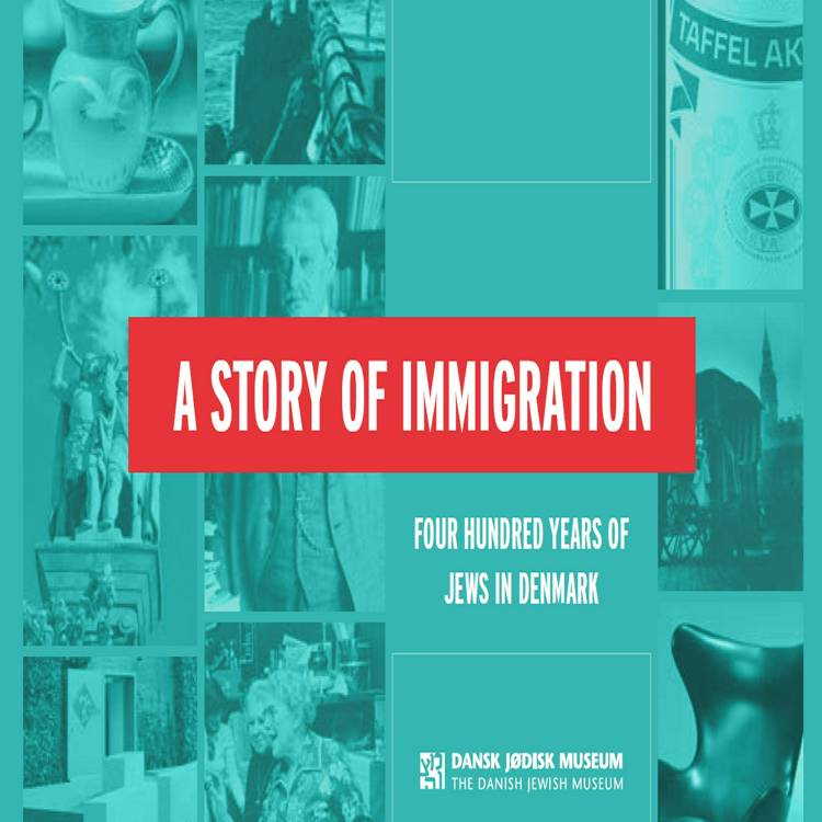 A Story of Immigration af Janne Laursen, Cecilie Felicia Stokholm Banke og Signe Bergman Larsen m.fl.
