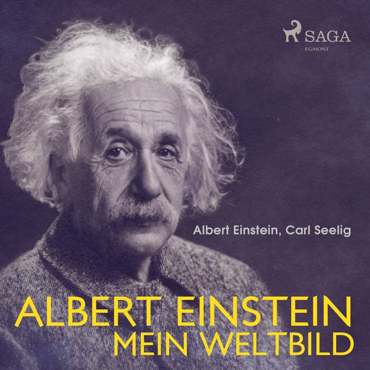 Albert Einstein - Mein Weltbild af Albert Einstein og Carl Seelig