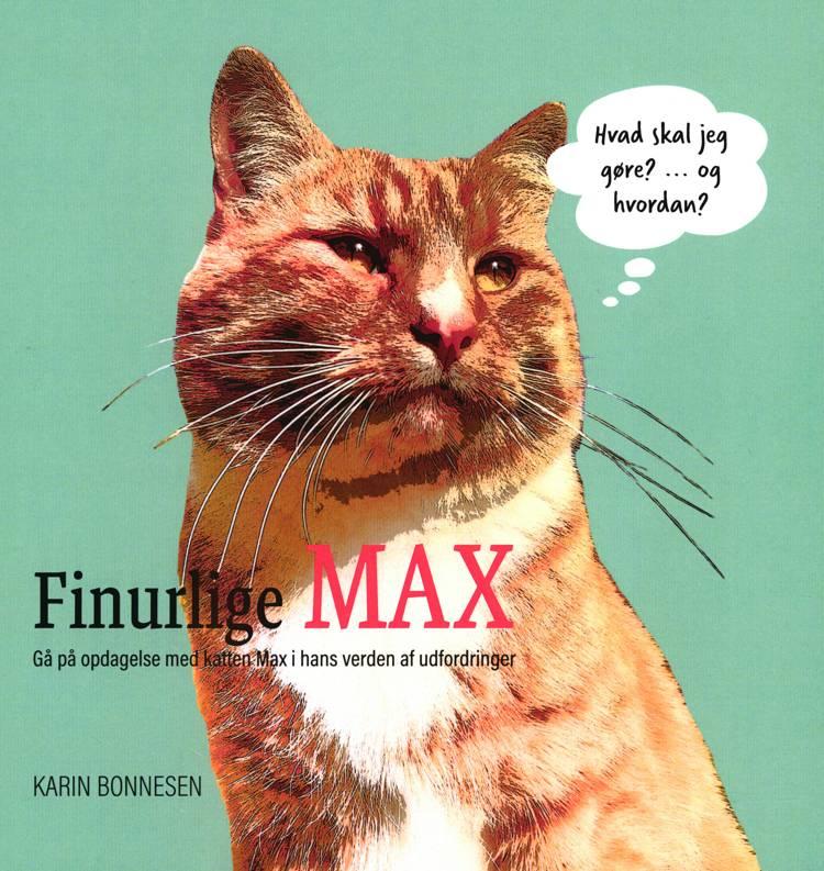 Finurlige MAX af Karin Bonnesen