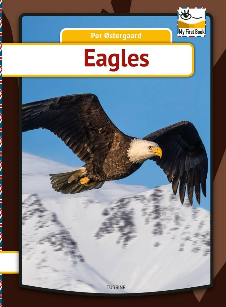 Eagles af Per Østergaard