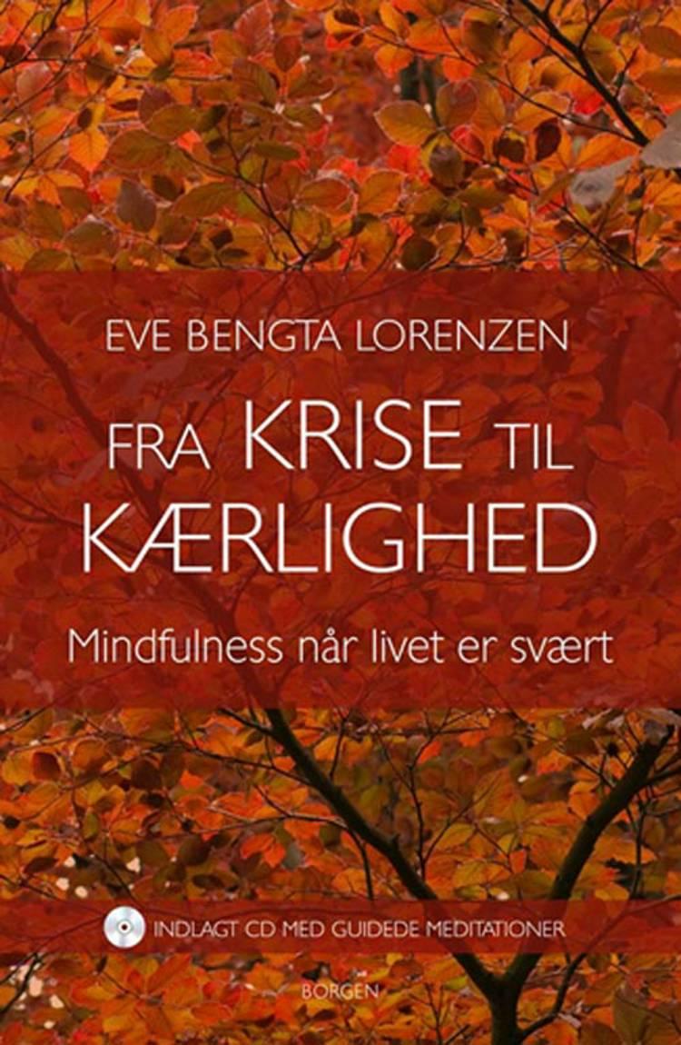 Fra krise til kærlighed af Eve Bengta Lorenzen