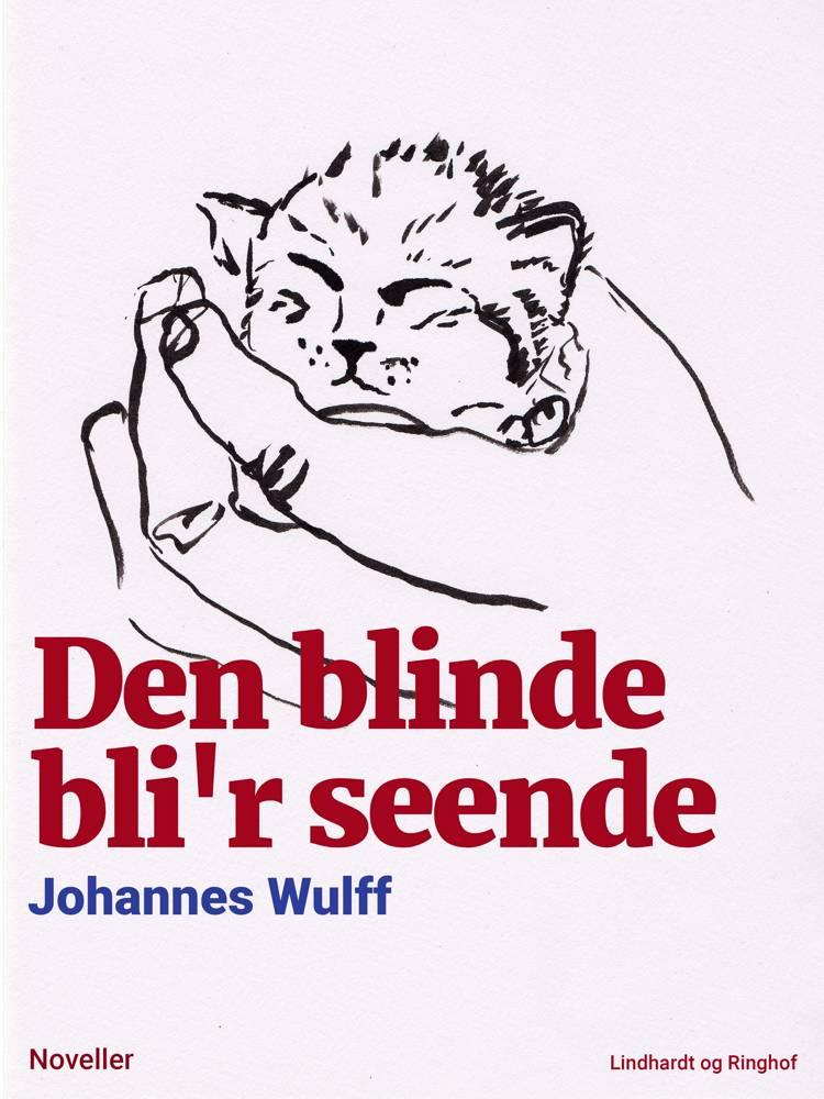 Den blinde bli'r seende af Johannes Wulff