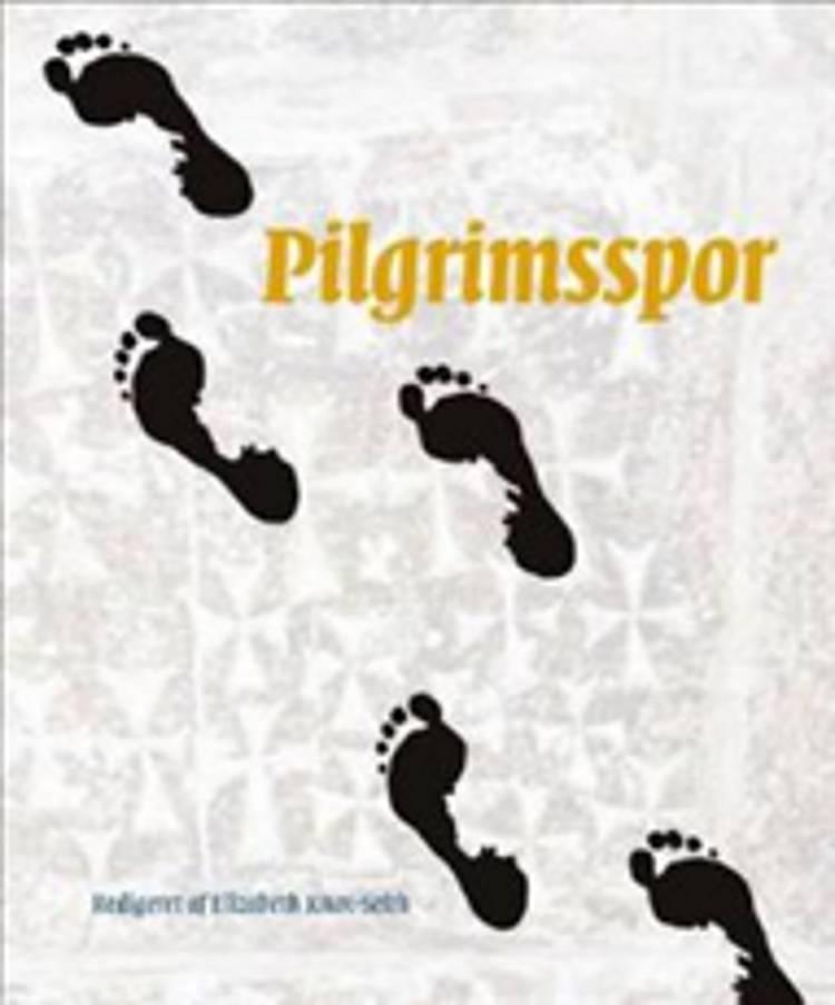 Pilgrimsspor af Pater Max Mizzi, Anders Laugesen og Martin Fog-Nielsen m.fl.