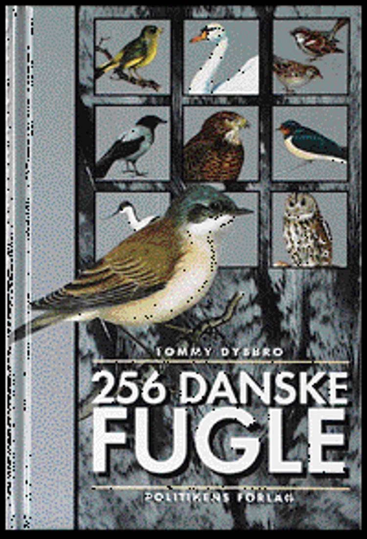 256 danske fugle af Tommy Dybbro