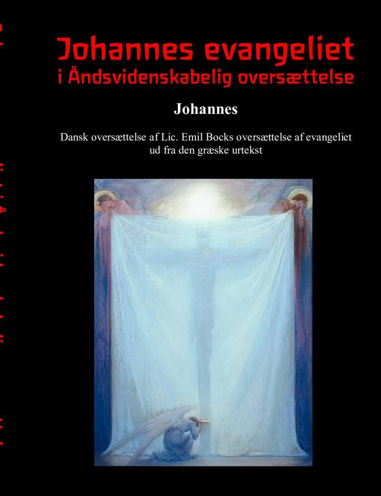 Johannes Evangeliet i åndsvidenskabelig oversættelse af Finn Nørlev