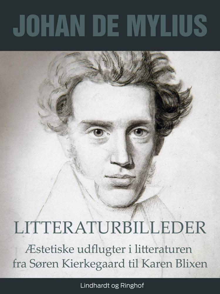 Litteraturbilleder: Æstetiske udflugter i litteraturen fra Søren Kierkegaard til Karen Blixen af Johan de Mylius