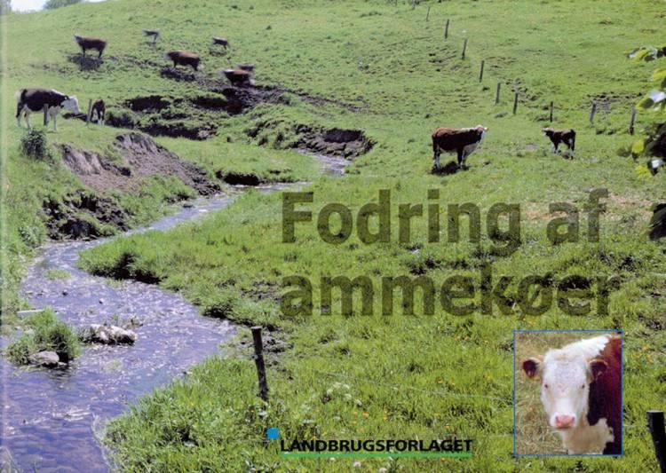 Fodring af ammekøer af Arne Munk, Astrid Mikél Jensen og Merete Jensen