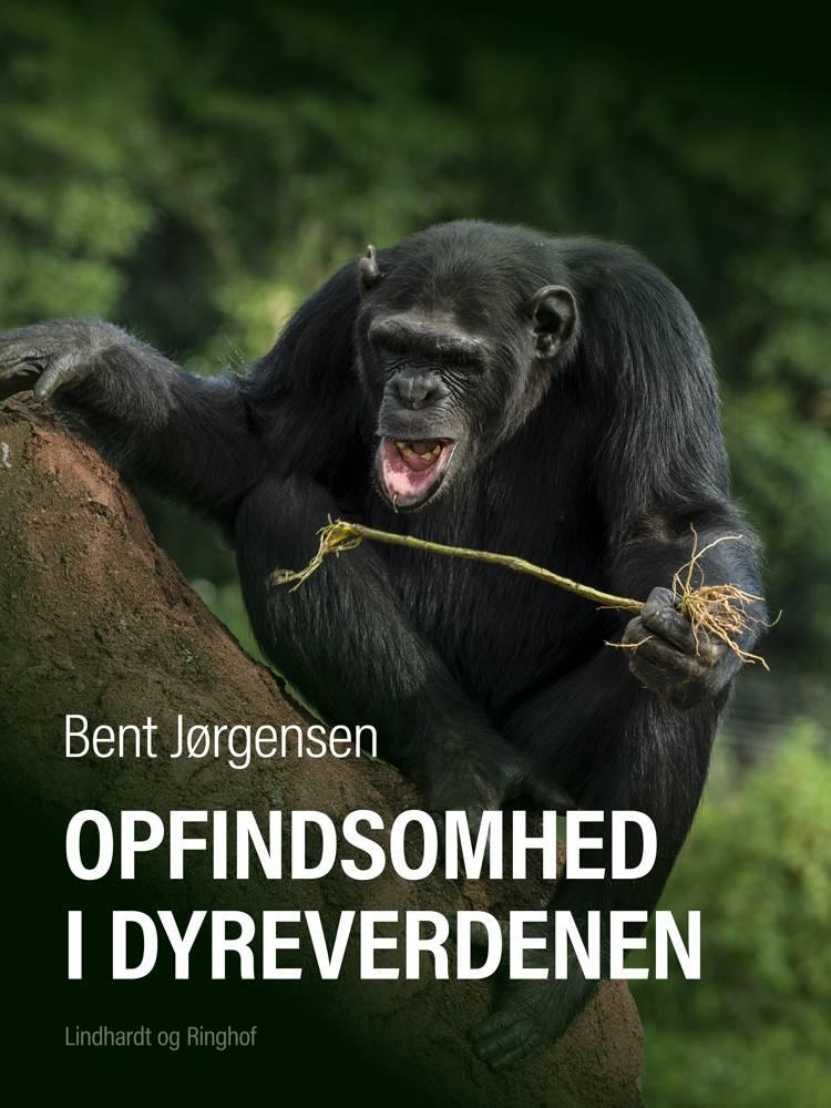 Opfindsomhed i dyreverdenen af Bent Jørgensen
