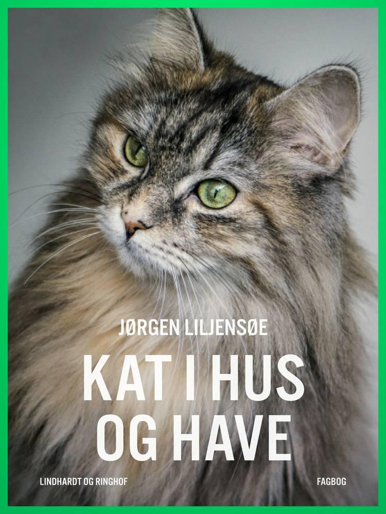 Kat i hus og have af Jørgen Liljensøe