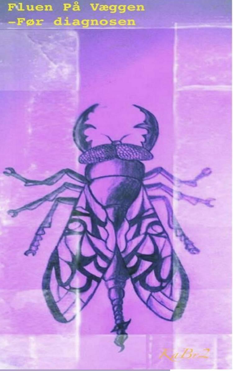 Fluen på væggen - før diagnosen af Ka Br2