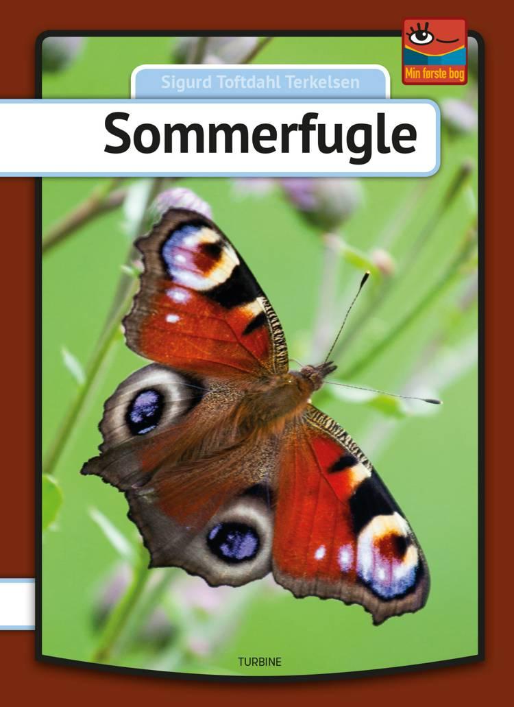 Sommerfugle af Sigurd Toftdahl Terkelsen