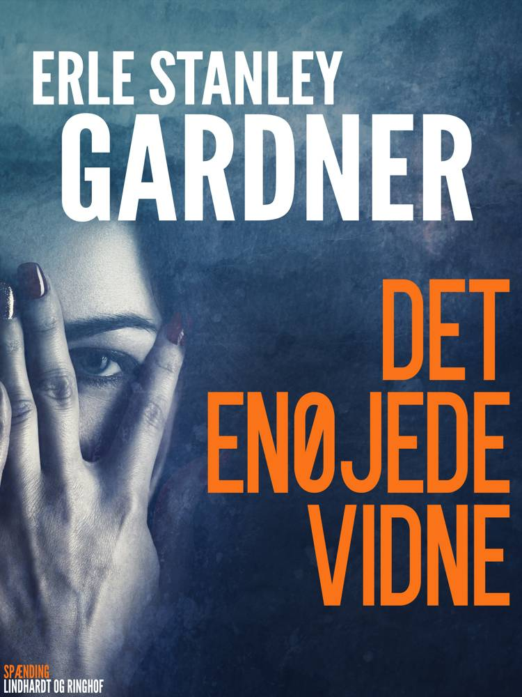 Det enøjede vidne af Erle Stanley Gardner