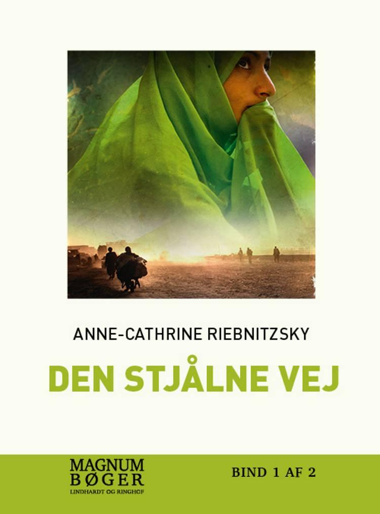 Den stjålne vej (storskrift) af Anne-Cathrine Riebnitzsky