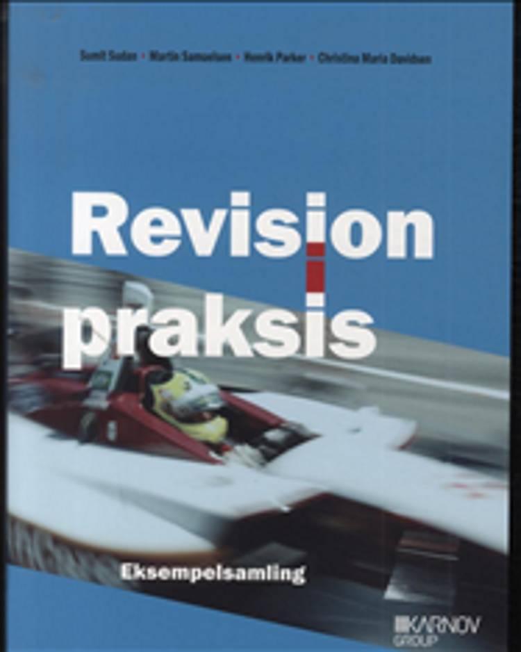 Revision i praksis af Christina Maria Davidsen, Sumit Sudan, Martin Samuelsen, Henrik Parker og Christina Davidsen m.fl.