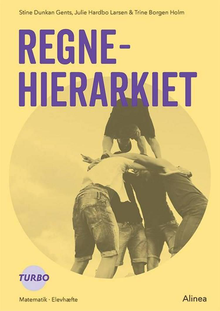 Regnehierarkiet af Julie Hardbo Larsen, Trine Borgen Holm og Stine Dunkan Gents