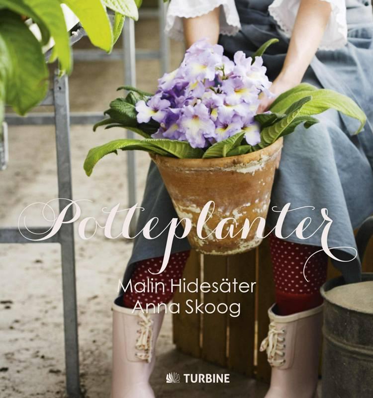 Potteplanter af Malin Hidesäter