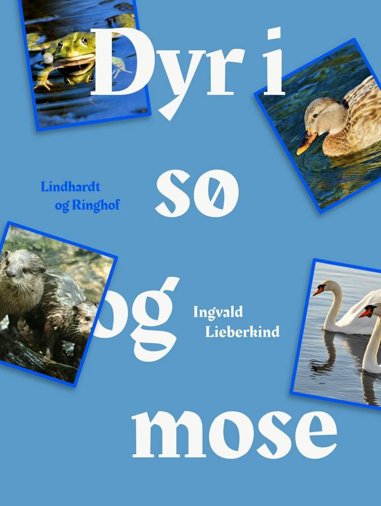Dyr i sø og mose af Ingvald Lieberkind