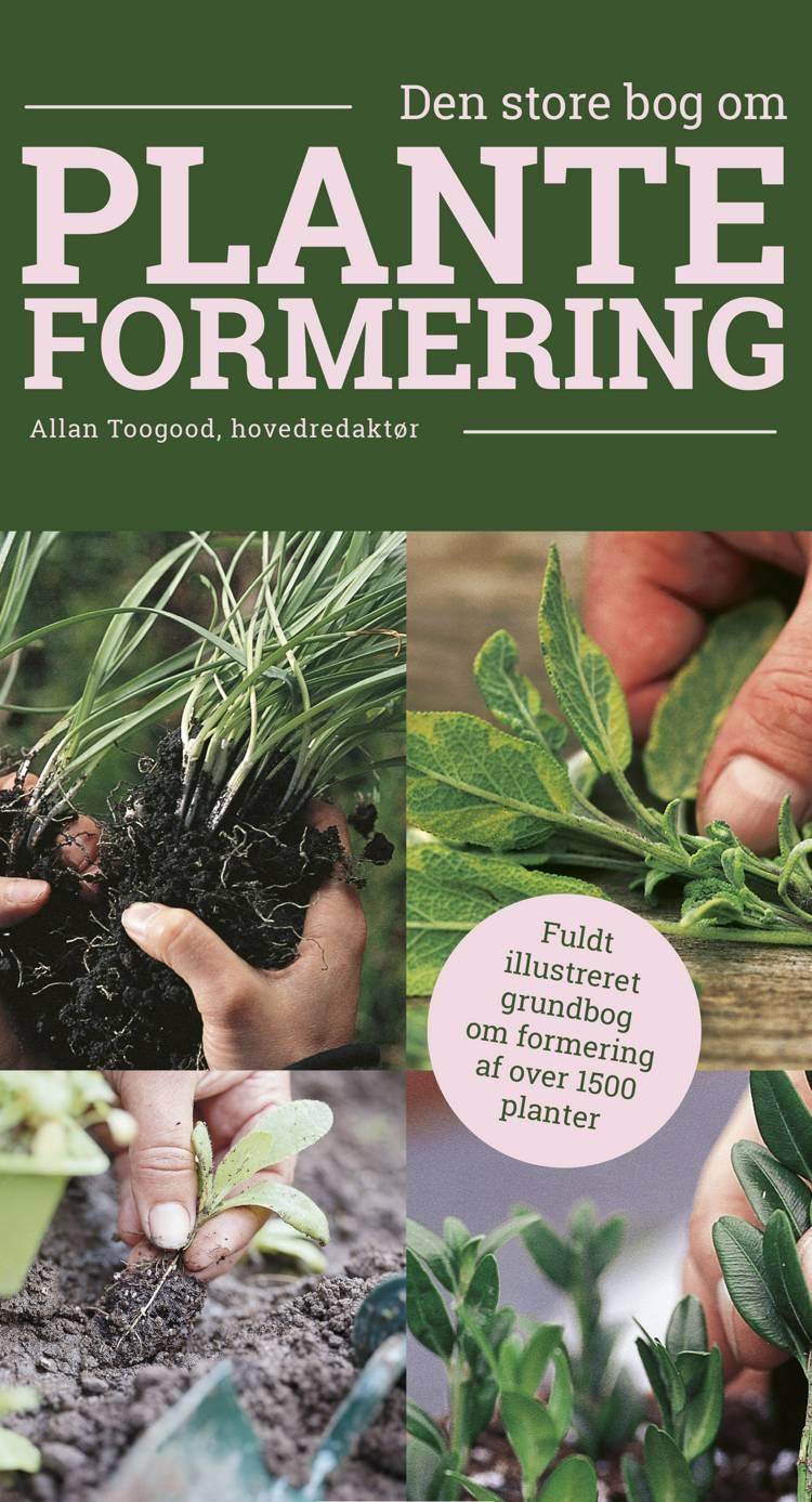 Den store bog om planteformering af Allan Toogood
