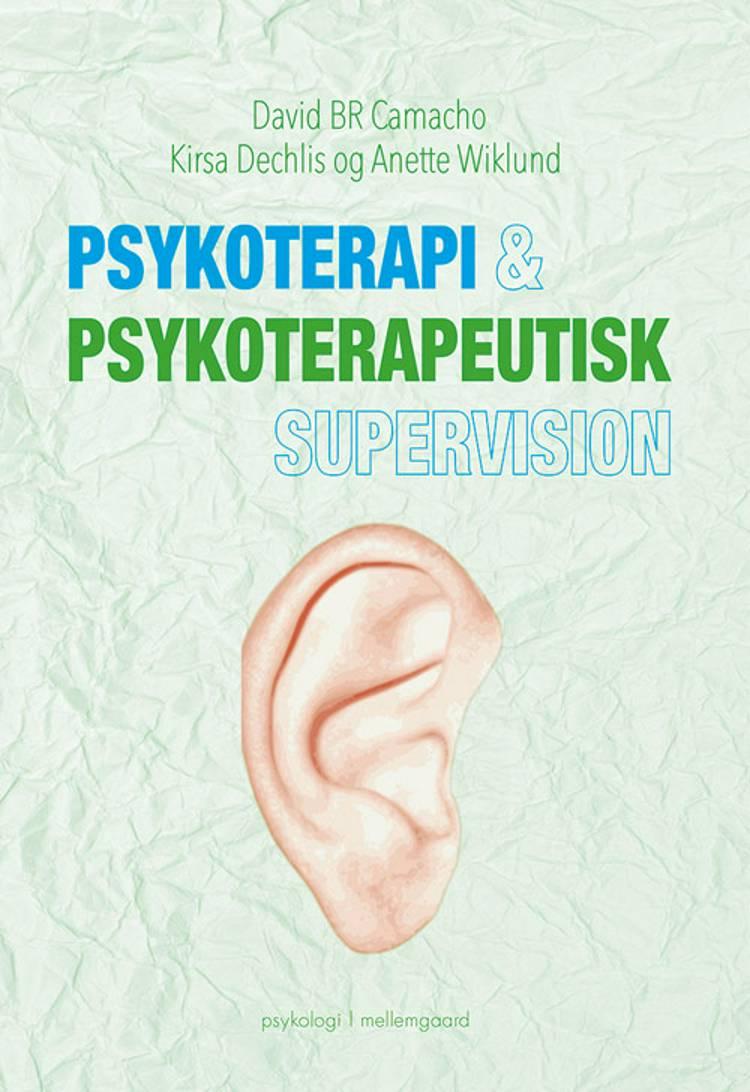 Psykoterapi & psykoterapeutisk supervision af David B. R. Camacho, Kirsa Dechlis, Anette Wiklund og David BR. Camacho m.fl.