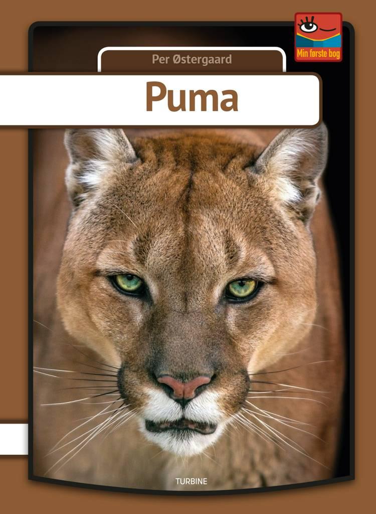 Puma af Per Østergaard