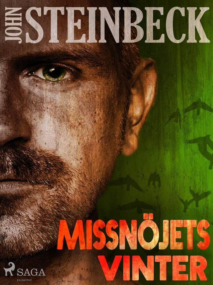 Missnöjets vinter af John Steinbeck