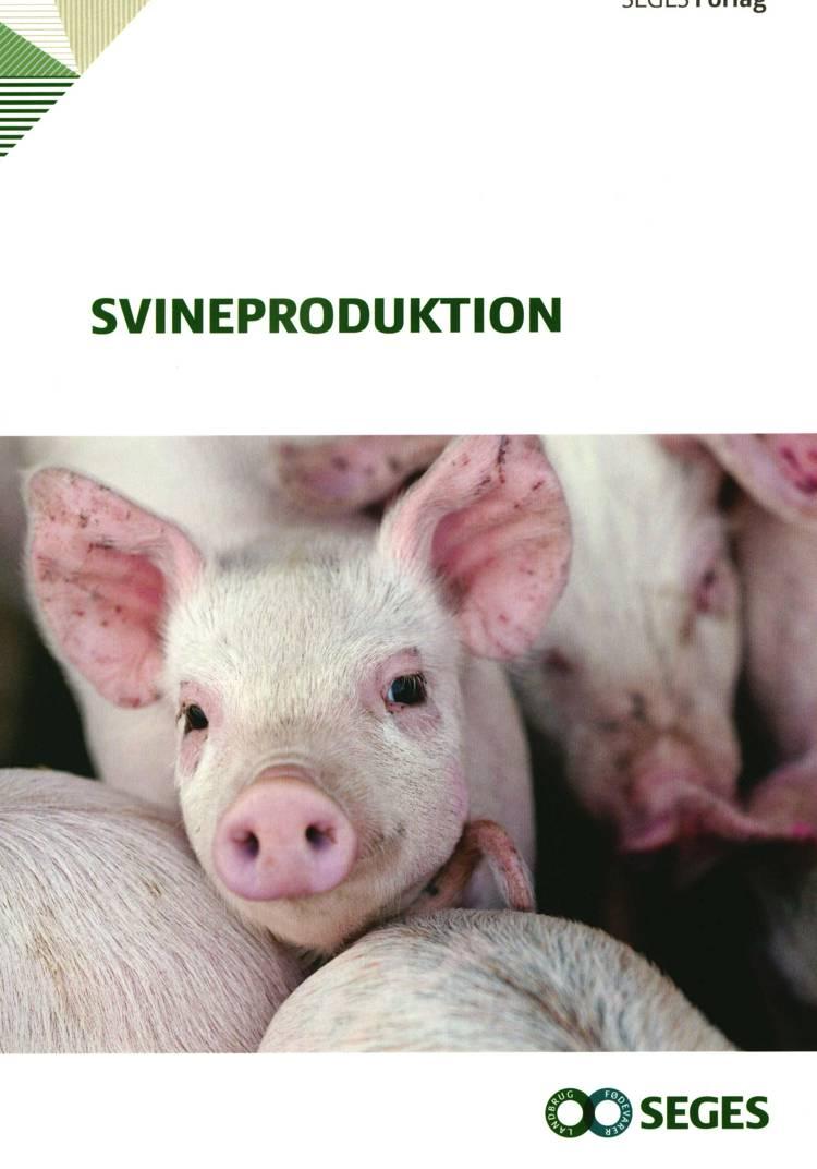 Svineproduktion af Andreas Vest Weber, Maria Eskildsen og Anders Vest Weber