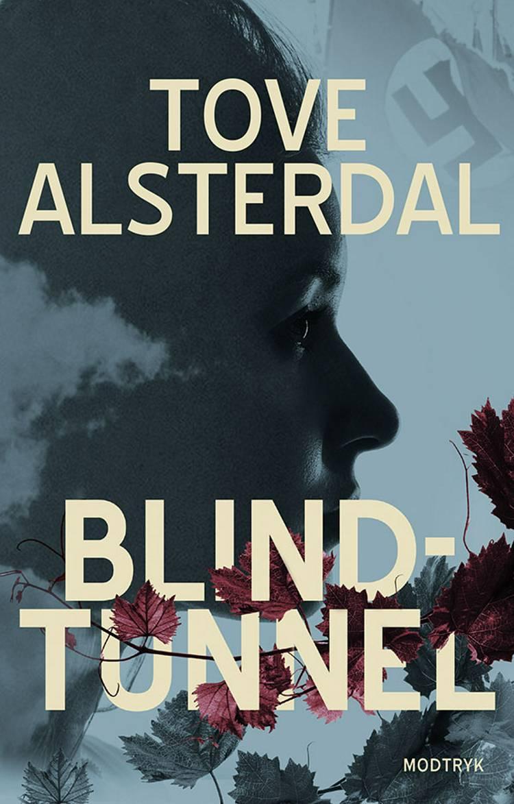 Blindtunnel af Tove Alsterdal