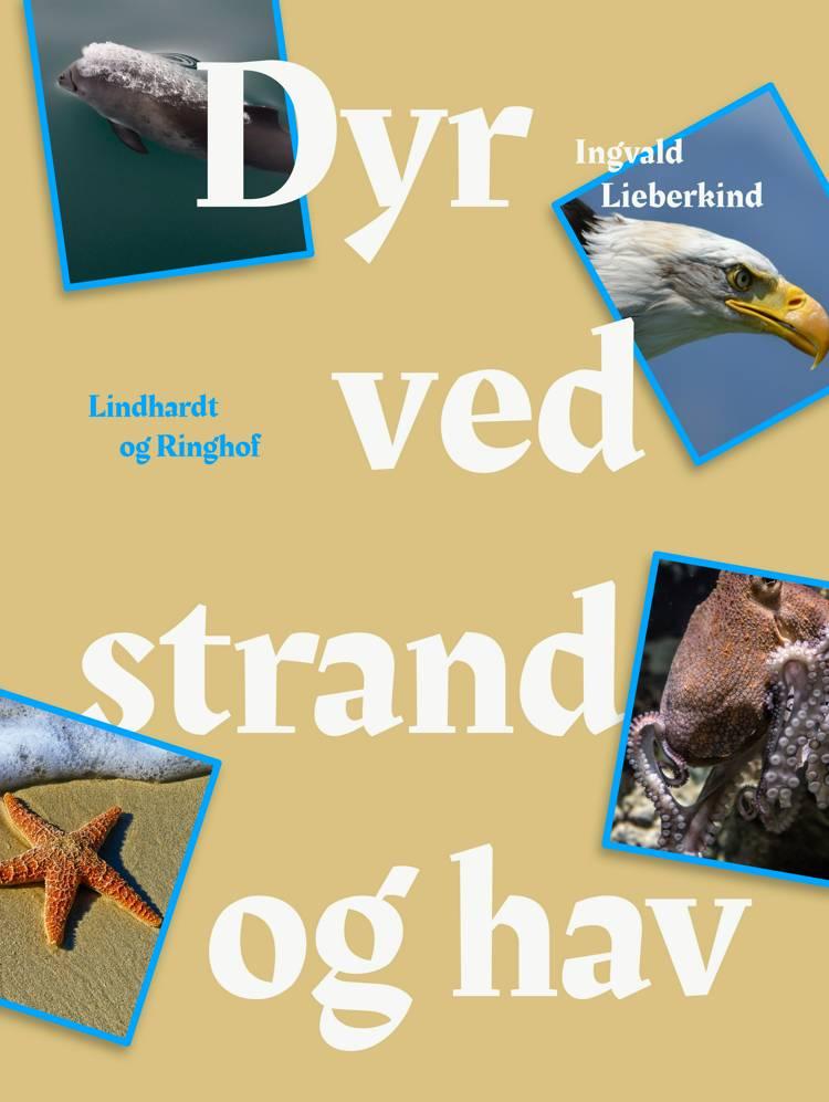 Dyr ved strand og i hav af Ingvald Lieberkind