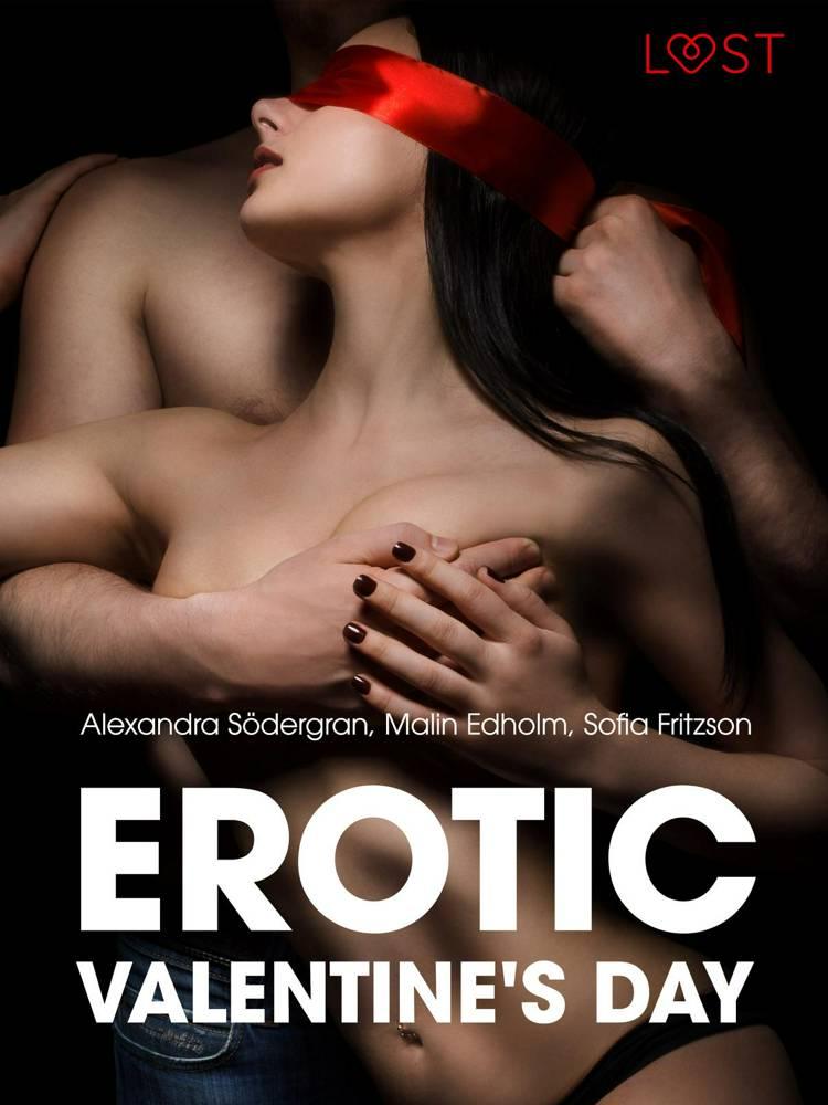 Erotic Valentine s Day - 5 erotische verhalen af Sofia Fritzson, Alexandra Södergran og Malin Edholm
