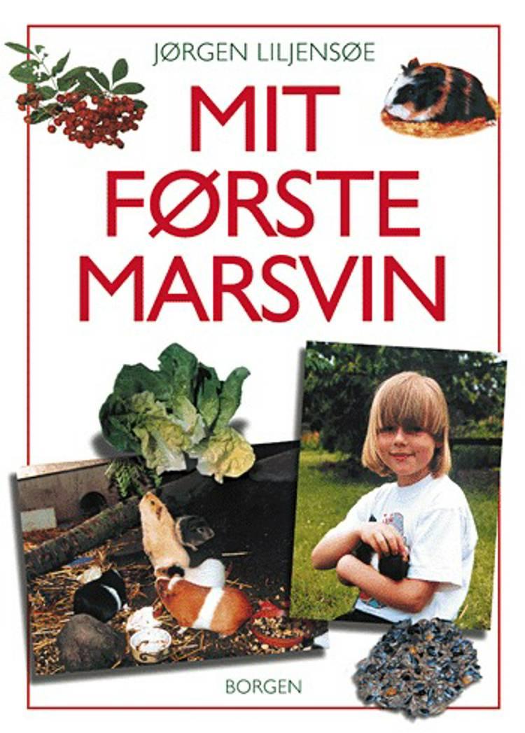 Mit første marsvin af Jørgen Liljensøe