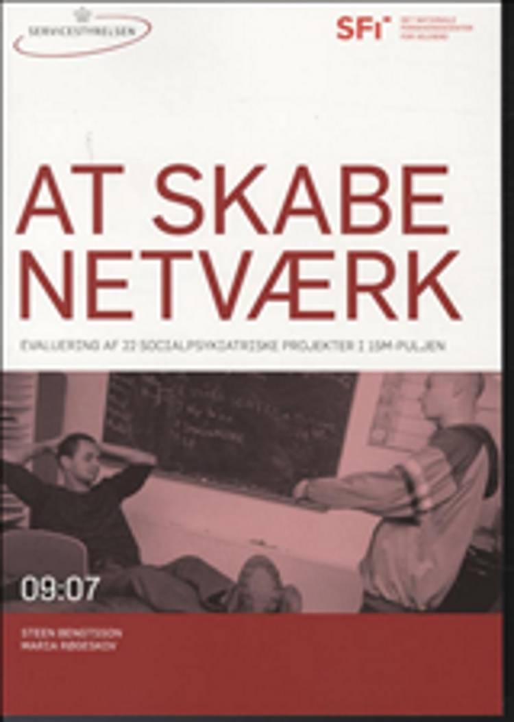 At skabe netværk af Steen Bengtsson og Maria Røgeskov