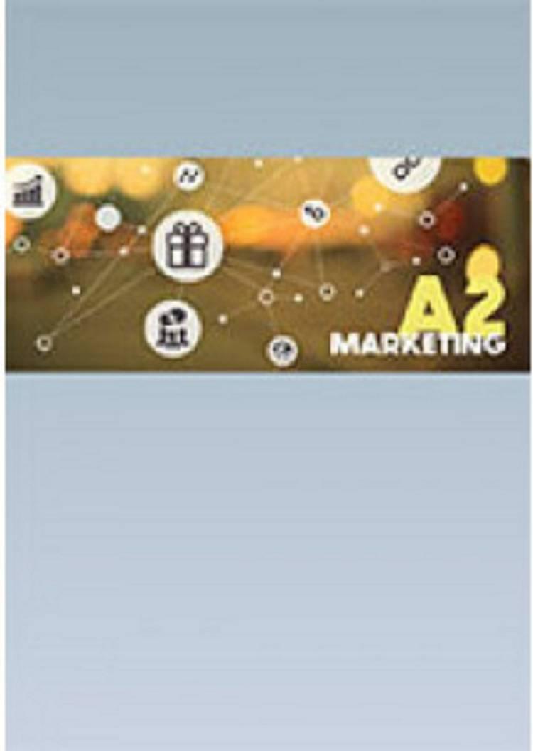 Marketing A2 af Michael Bregendahl, Morten Haase og René Mortensen m.fl.