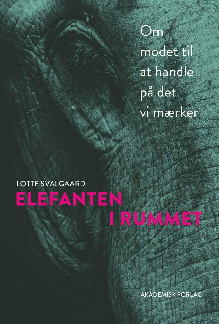 Elefanten i rummet af Lotte Svalgaard