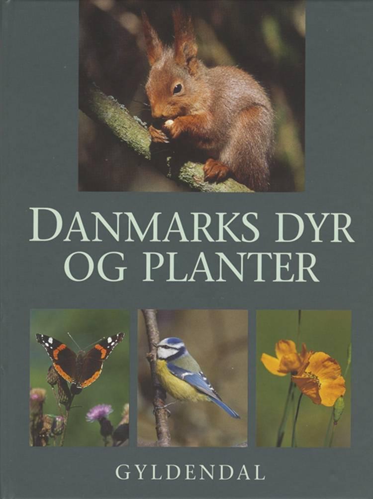 Danmarks dyr og planter af Jon Feilberg og Mogens Andersen