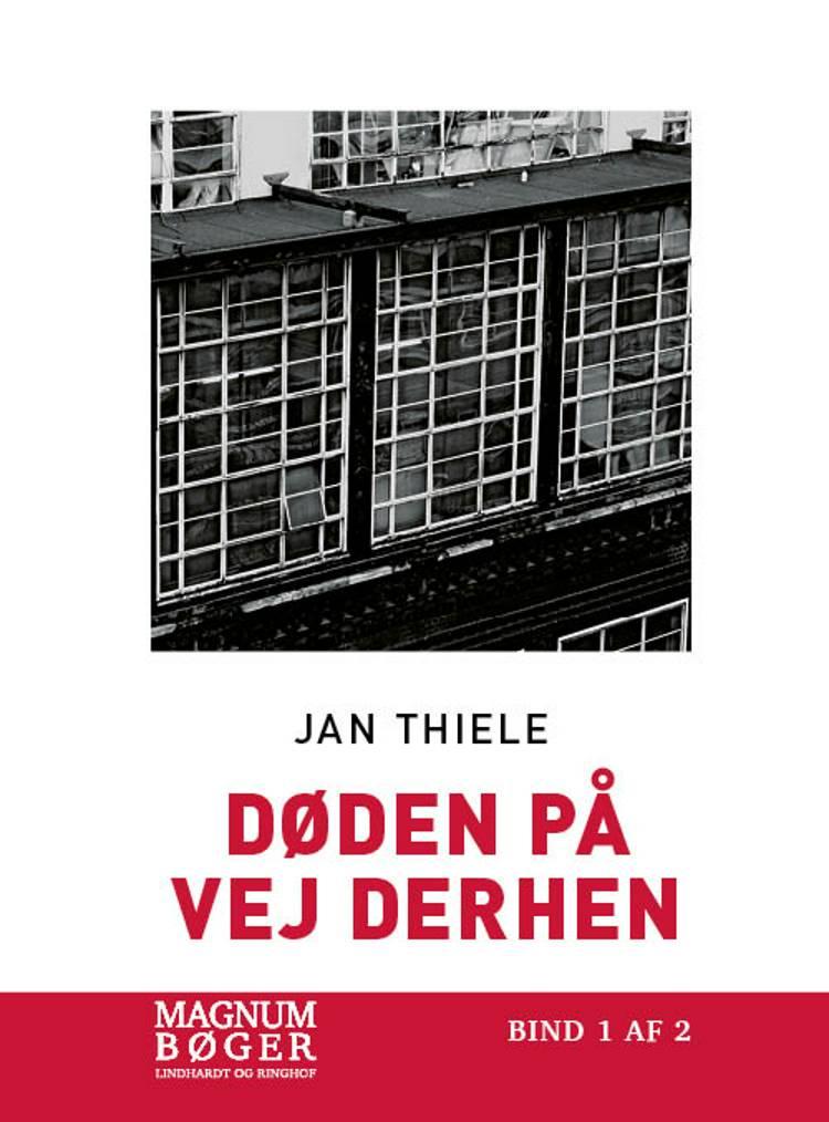 Døden på vejen derhen (Storskrift) af Jan Thiele
