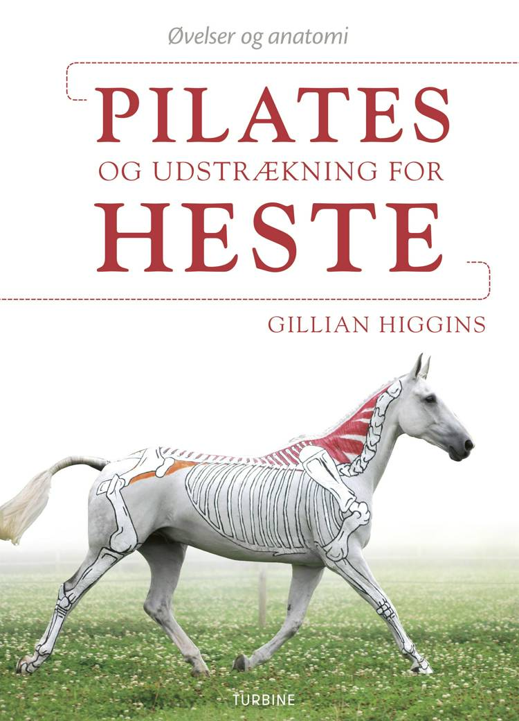 Pilates og udstrækning for heste af Gillian Higgins