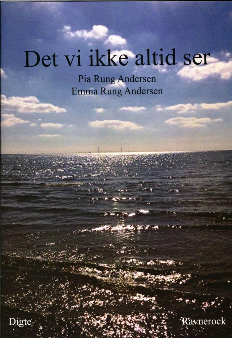 Det vi ikke altid ser af Pia Rung Andersen